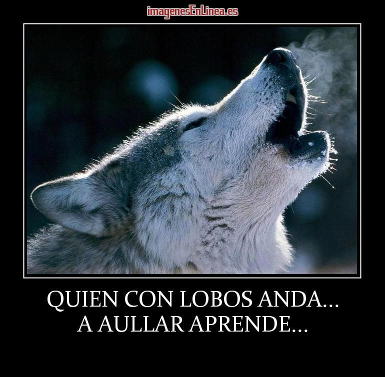 Frases Para Amistades Peligrosas Quien Con Lobos Anda Imagenes Gratis
