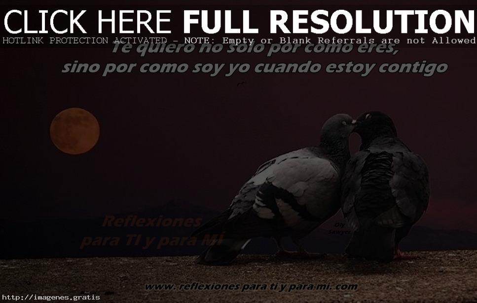 Imagenes Quiero Un Amor Verdadero Www Imagenesmy Com