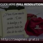 Postales con mensajes y frases de amor verdadero para dedicar a tu pareja