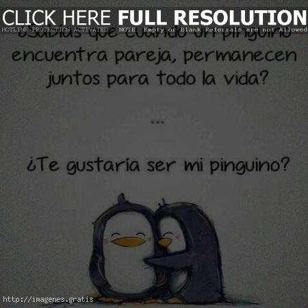 Frases De Amor Mio Los Pinguinos Imagenes Gratis