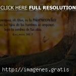 Mensajes positivos de Dios para hoy