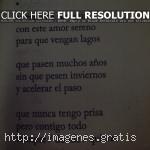 Poesías de amor para mi novia