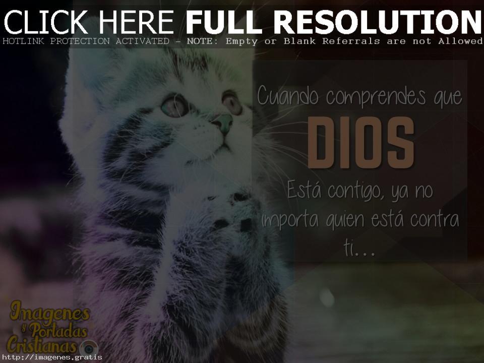 Cortas oraciones de Dios para momentos complicados de la vida