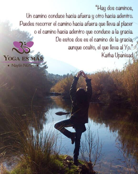 Frases cortas de sanación espiritual reiki para la vida