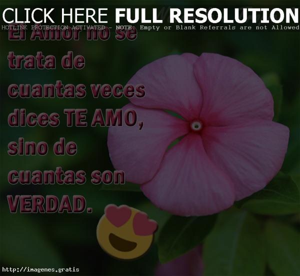 Frases Locas Amor Demostrar Amas Verdad 5 Imagenes Gratis
