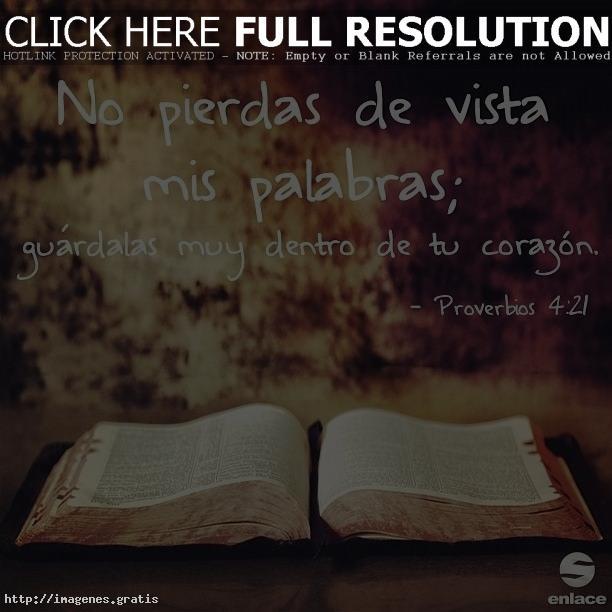 Proverbios de Dios para nuestras vidas