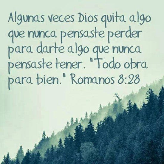 Bonitas palabras de Dios para que puedas avanzar en tu vida