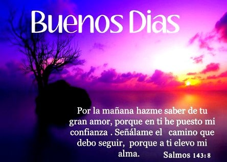 Frases Buenos Dias Amor De Mi Vida 2 Imagenes Gratis