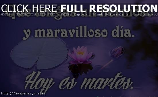 Feliz Martes: El segundo dia de la semana con bonitos mensajes